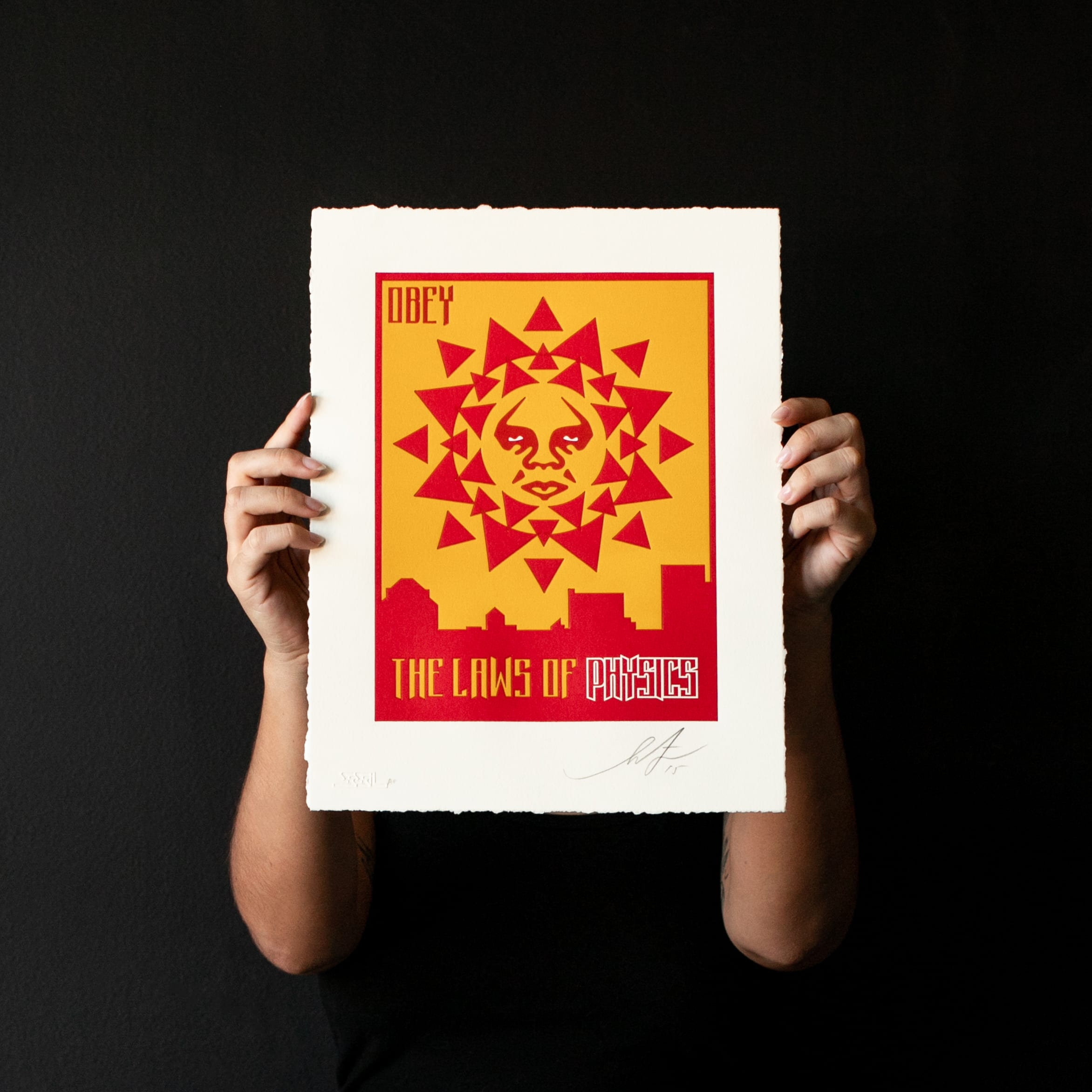 The laws of physics - Shepard Fairey Image 3